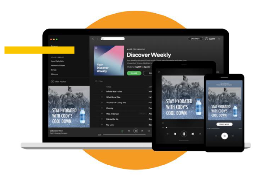 Programmatic Display auf Spotify